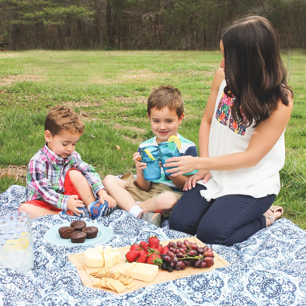Having A Picnic With Garden Lites Muffins