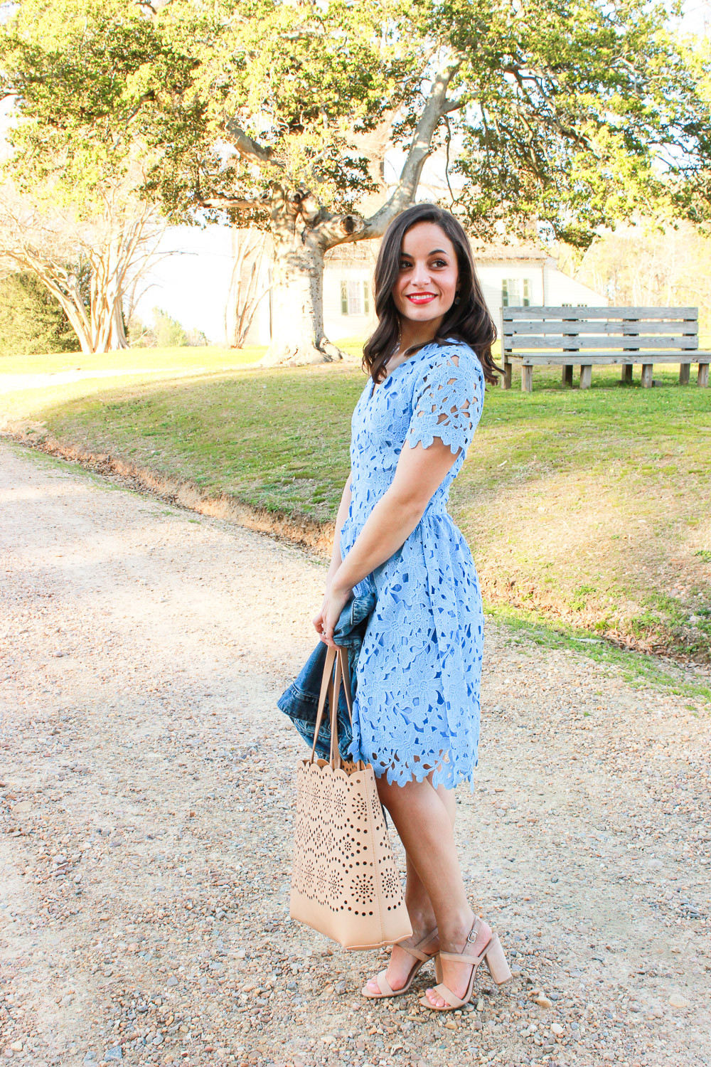 Lace Skater Dress - Under $55, spring 2017 fashion picks