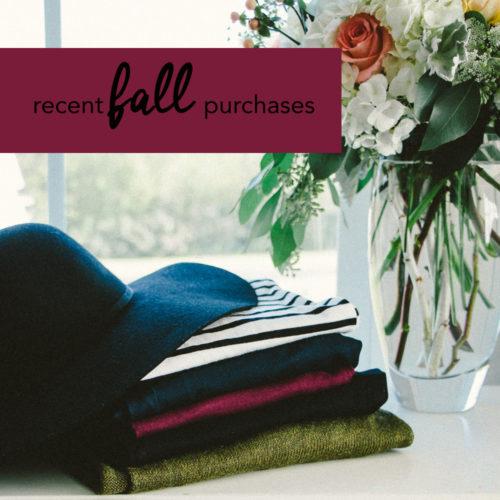 Recent Fall Buys - Blogger Brooke of Pumps & Push-Ups